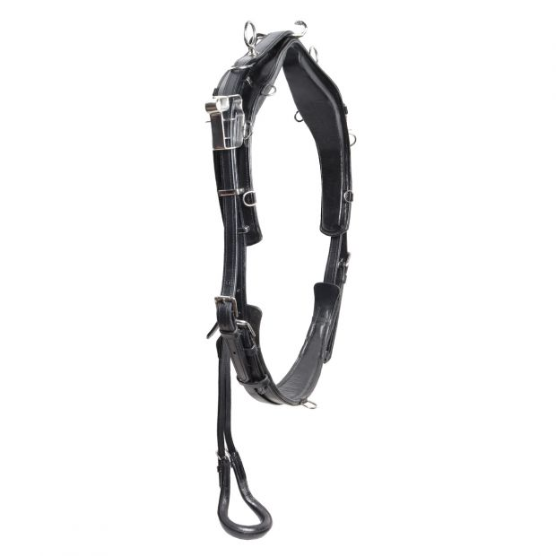 GP-Tack Harness set training QH leather