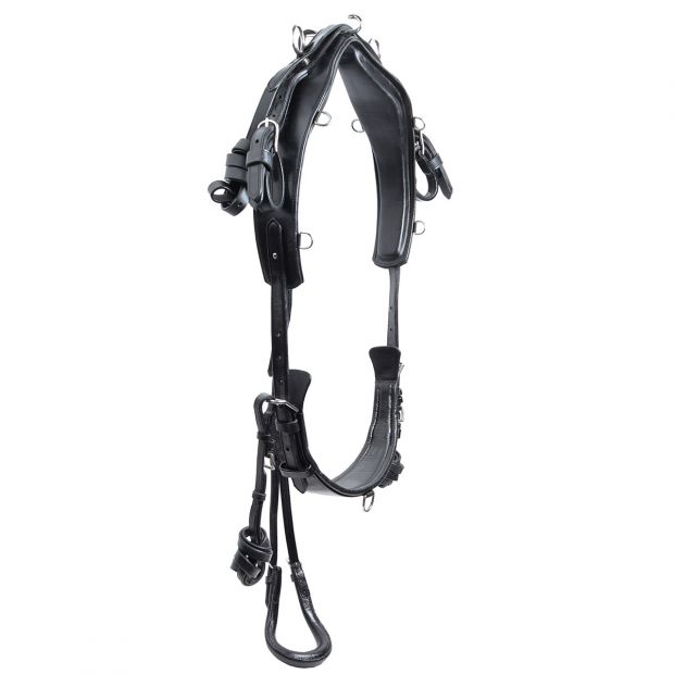 Star Tack Harness complete training leather