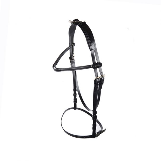Walsh Open bridle synthetic