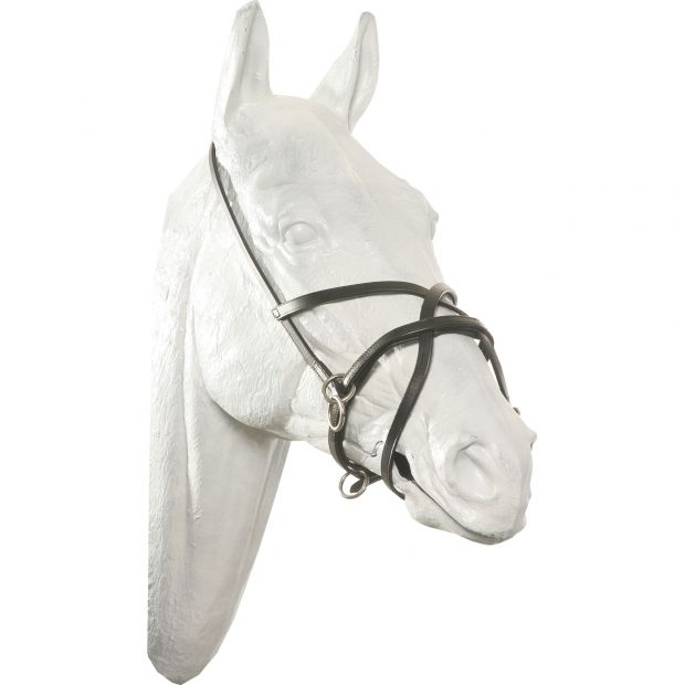 GP-Tack Leather head halter with figure 8 cavesson