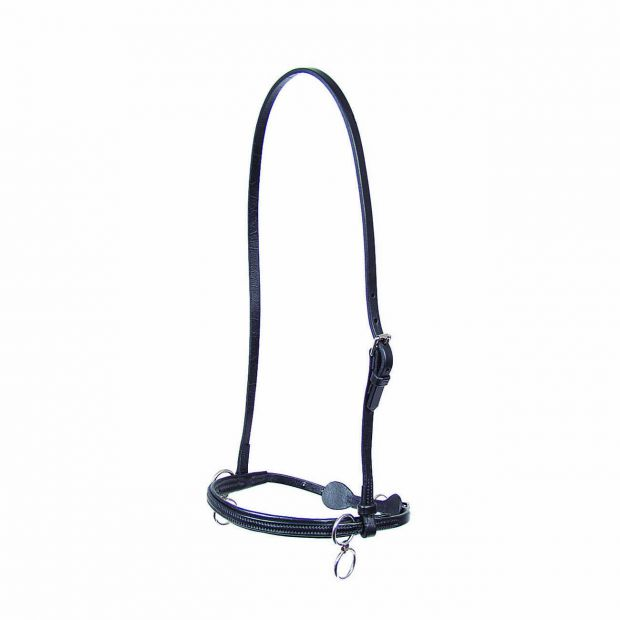 Walsh Leather head halter