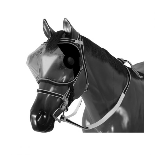Visir with blinds for horse