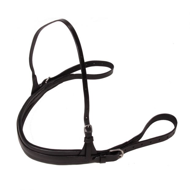 GP-Tack Breast collar training with short lines