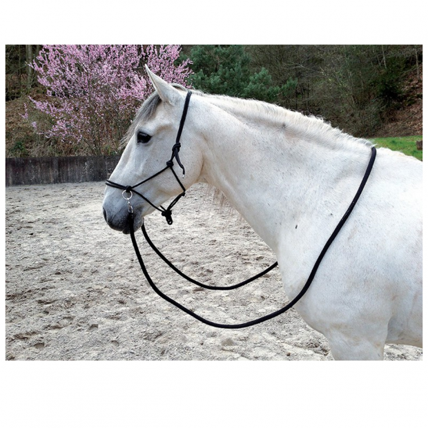Ethological rope halter with reins