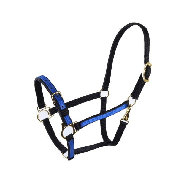 """Equitare Nylon halter 3/4"""" 2-coloured with buckle on nose"""
