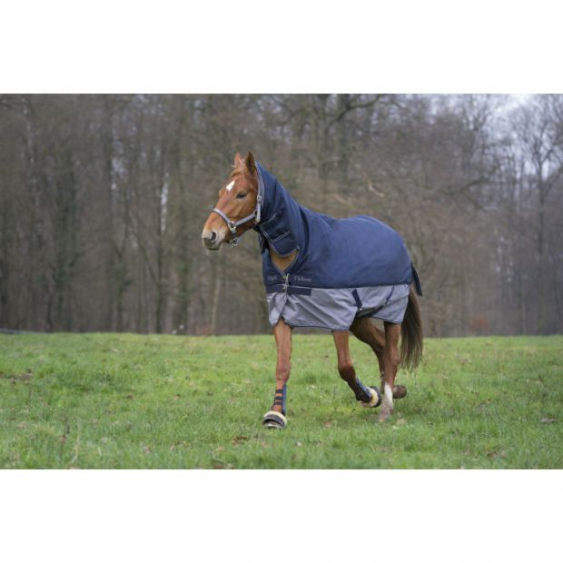 Equi-Theme Tyrex 200g fullneck pony outdoor rug
