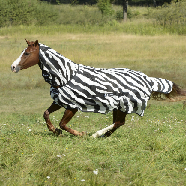 Bucas Buzz-Off Zebra Fullneck pony