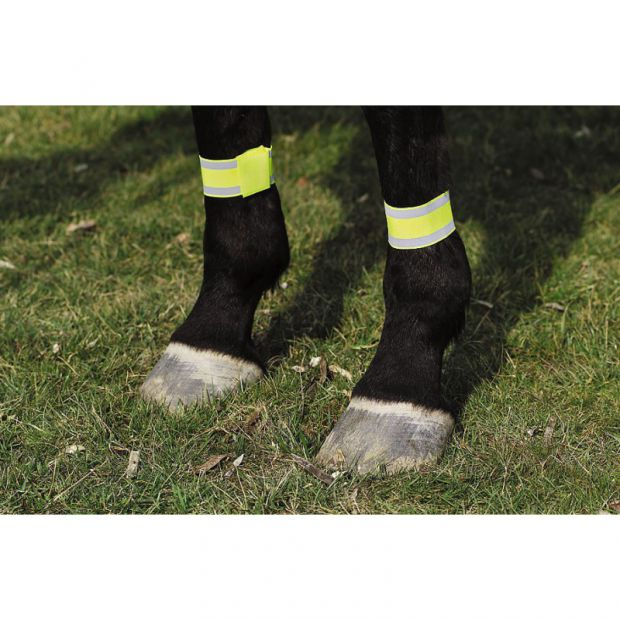 Reflective leg bands, pair