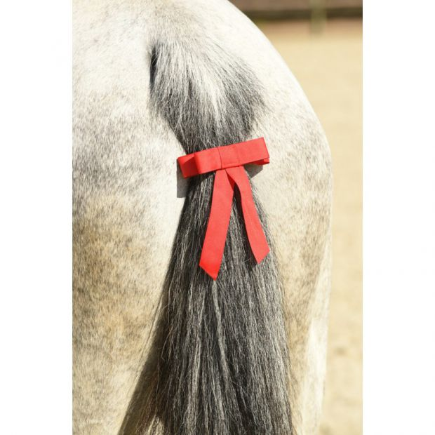 Tail rosette red