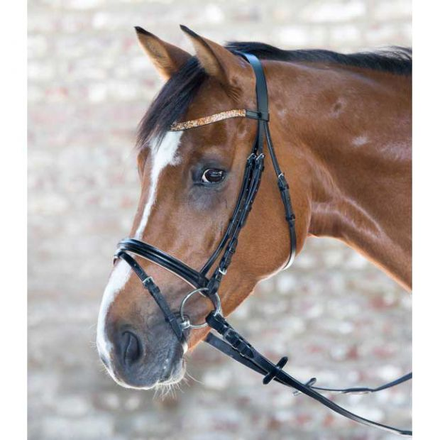 Star Lovely Bridle with web reins