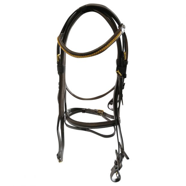 Chetak bridle with web reins