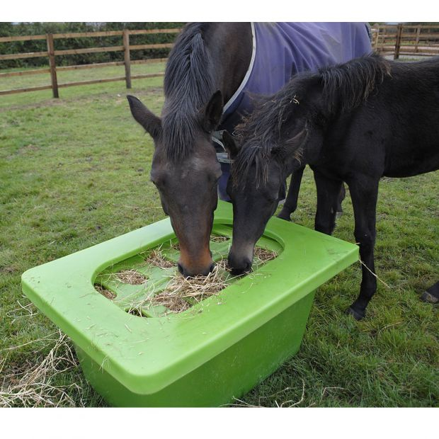 Hay Saver Slow Feeding box