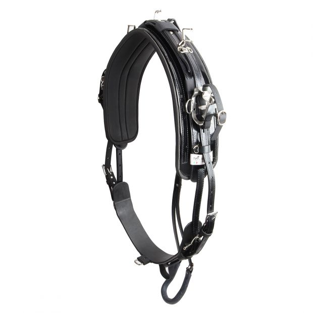 Racing Tack harness complete QH leather